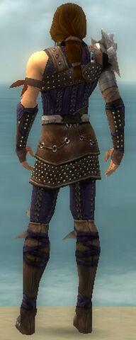 File:Ranger Studded Leather Armor M dyed back.jpg