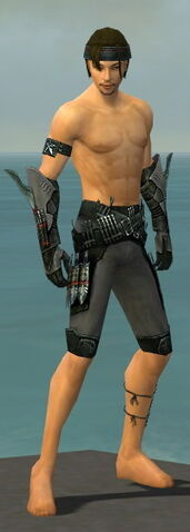 File:Assassin Imperial Armor M gray arms legs front.jpg