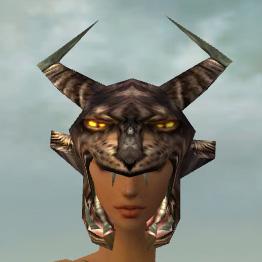 File:Warrior Charr Hide Armor F gray head front.jpg