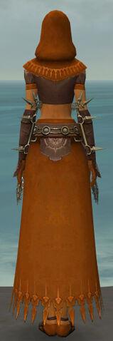 File:Dervish Sunspear Armor F dyed back.jpg