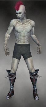 Demonhorn Boots M gray front