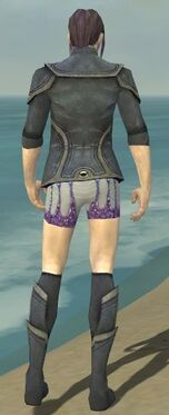 Elementalist Ascalon Armor M gray chest feet back