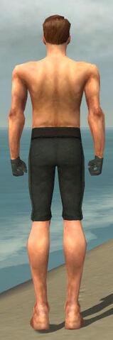 File:Mesmer Krytan Armor M gray arms legs back.jpg