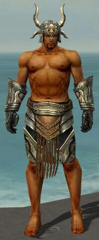 File:Warrior Elite Sunspear Armor M gray arms legs front.jpg