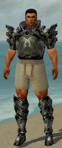 File:Warrior Obsidian Armor M gray chest feet front.jpg