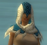 File:Dervish Norn Armor F dyed head front.jpg
