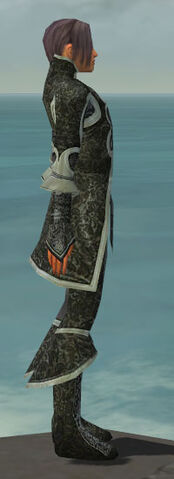 File:Elementalist Elite Canthan Armor M gray side.jpg
