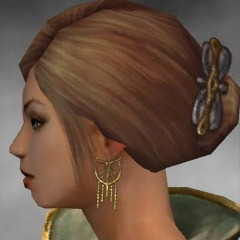 File:Mesmer Elite Canthan Armor F gray earrings.jpg