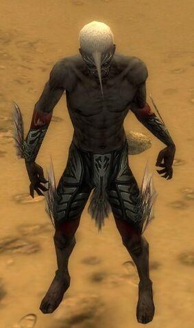 File:Necromancer Primeval Armor M gray arms legs front.jpg