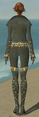 File:Mesmer Krytan Armor F gray back.jpg