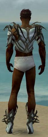 File:Paragon Primeval Armor M gray chest feet back.jpg