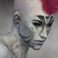 File:Necromancer Elite Luxon Armor M gray head right.jpg