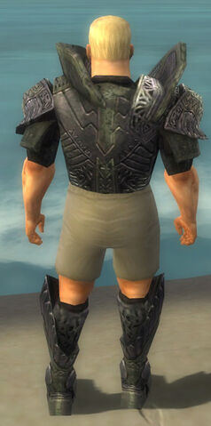 File:Warrior Elite Platemail Armor M gray chest feet back.jpg