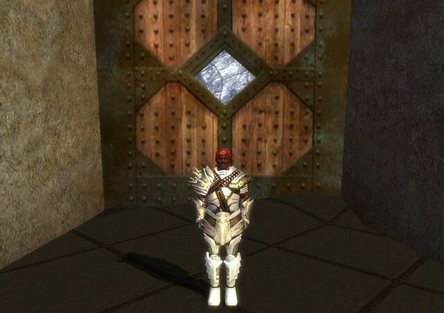 File:Warrior Deldrimor Armor M dyed white front.jpg