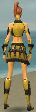 Assassin Elite Canthan Armor F dyed back