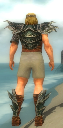 File:Warrior Luxon Armor M gray chest feet back.jpg