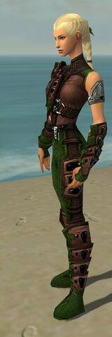 File:Ranger Obsidian Armor F dyed side alternate.jpg