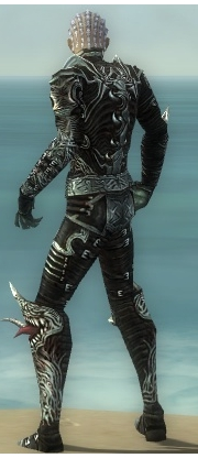 File:Necromancer Canthan Armor M gray back.jpg