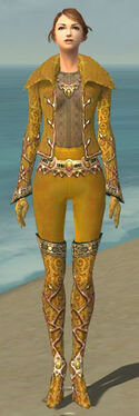 Mesmer Krytan Armor F dyed front