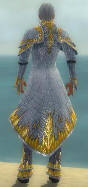 Elementalist Elite Iceforged Armor M dyed back