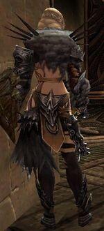 Jora Armor Deldrimor Back
