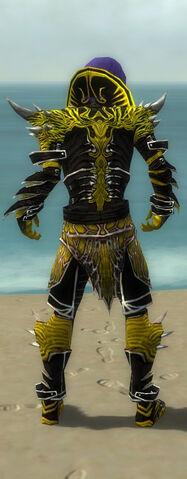 File:Necromancer Elite Luxon Armor M dyed back.jpg