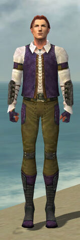 File:Mesmer Ascalon Armor M dyed front.jpg
