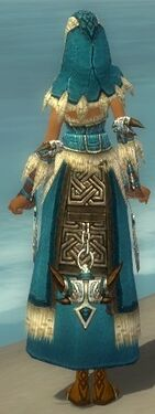 Dervish Norn Armor F dyed back