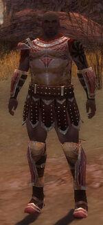 Goren Armor Starter Front