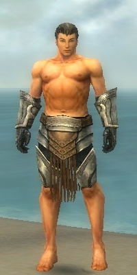 File:Warrior Sunspear Armor M gray arms legs front.jpg