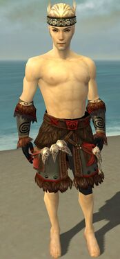Ritualist Norn Armor M gray arms legs front