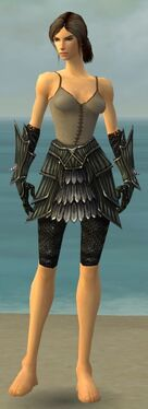Warrior Wyvern Armor F gray arms legs front