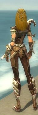 Ranger Asuran Armor F gray back