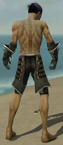 File:Necromancer Elite Kurzick Armor M gray arms legs back.jpg