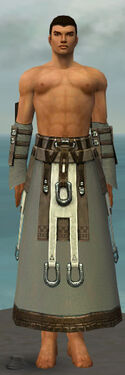 Dervish Elonian Armor M gray arms legs front