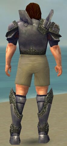 File:Warrior Platemail Armor M gray chest feet back.jpg