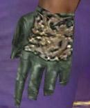 File:Mesmer Elite Canthan Armor M gloves.jpg