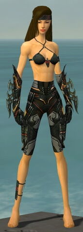 File:Assassin Elite Kurzick Armor F gray arms legs front.jpg