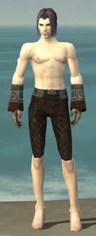 File:Elementalist Vabbian Armor M gray arms legs front.jpg