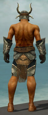 Warrior Elite Sunspear Armor M gray arms legs back