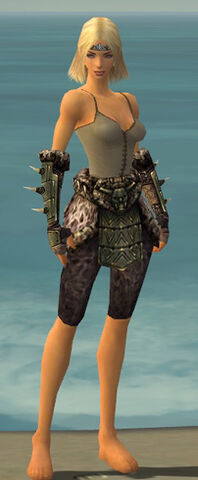 File:Warrior Elite Charr Hide Armor F gray arms legs front.jpg
