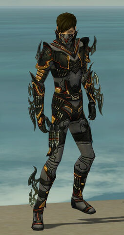 File:Assassin Elite Kurzick Armor M gray front.jpg