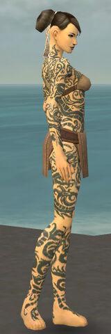 File:Monk Dragon Armor F gray side.jpg