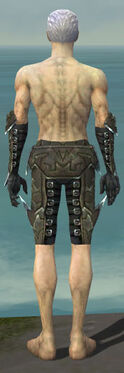 Necromancer Profane Armor M gray arms legs back