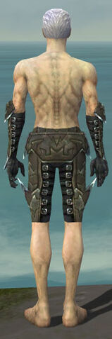 File:Necromancer Profane Armor M gray arms legs back.jpg