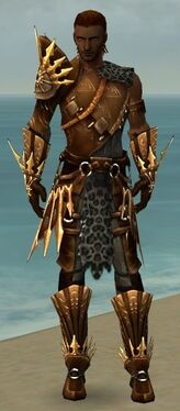 Ranger Elite Sunspear Armor M gray front