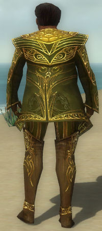 File:Norgu Mysterious Armor Back.jpg