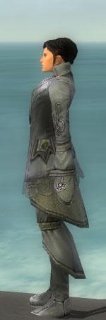 File:Elementalist Kurzick Armor M gray side.jpg