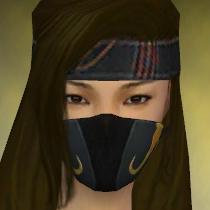 File:Assassin Vabbian Armor F dyed head front.jpg