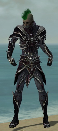 File:Necromancer Elite Necrotic Armor M dyed front.jpg
